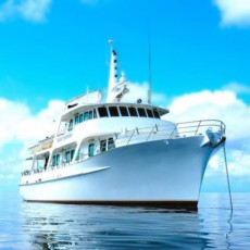 Reef Fishing Cruise & Trips – Swains Reef